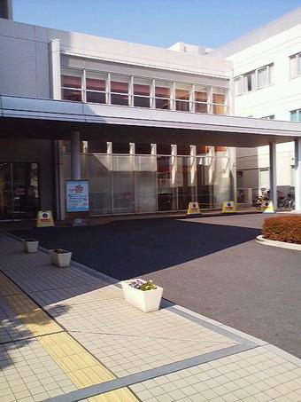 b65266c8.jpg